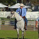 The Campdraft Judge(s). The Judge and His Horse. This horse watched every move of the 2012 Royal Canberra Show Campdraft Finals, in the pen and out on the arena. He didn't miss a thing. by Kate Howarth