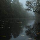 «Fog 2» de VoodooChild68