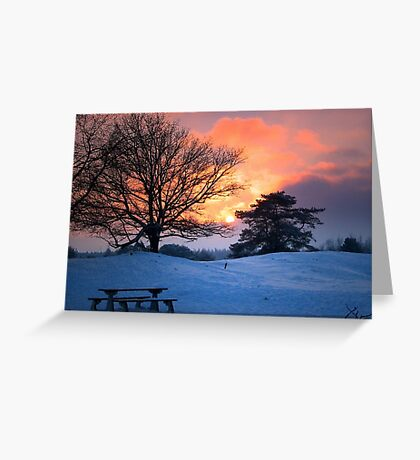 Sunset and the trees Greeting Card