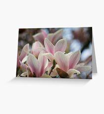 Blooming Magnolia Tree Greeting Card