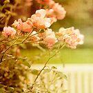 Romanttiset puutarhat by Henrietta Hassinen