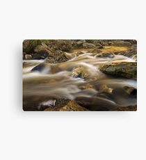 Flow of the Shadow Canvas Print