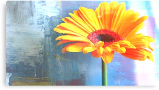 Orange And Blue - Floral Art Print by avalonmedia
