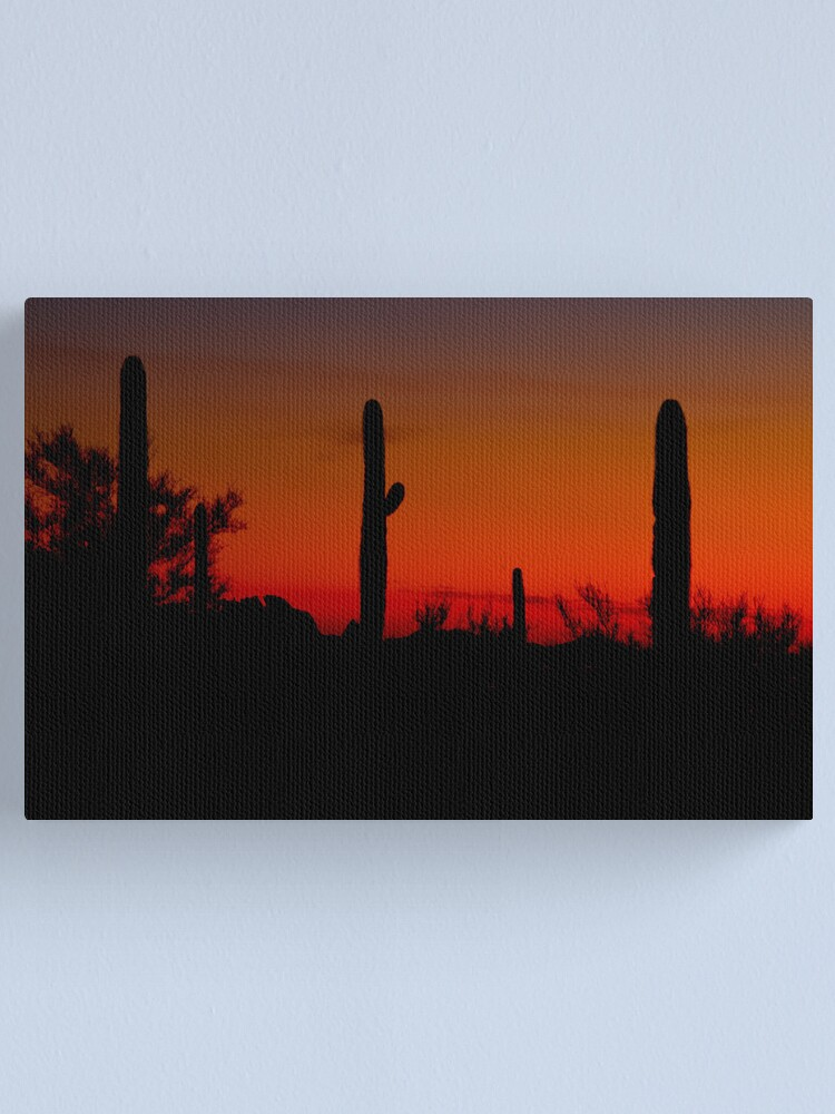 Alternate view of Cacti in the Red Canvas Print