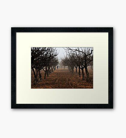Out Walking in the Orchard Framed Print