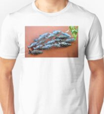 METAL FISH SCULPTURE IN SECRET GARDEN Unisex T-Shirt