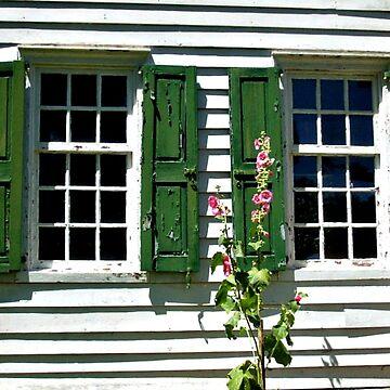 Windows, Clarke House, Princeton Battefield National Park, Princeton NJ by amberwayne52