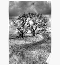 Monochrome Dreams - Cootamundra, NSW - The HDR Experience Poster