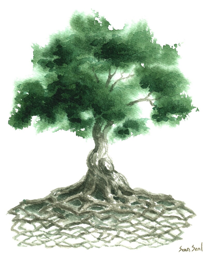 Celtic Tree Of Life by Sean Seal