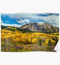 Colorado Rocky Mountain Fall Foliage  Poster