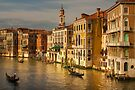 Gondolas Sailing Along the Canal of Venice, Italy by Daniel H Chui