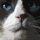 My Cat by John Fish