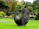 Fletcher Jones gardens by Kayleigh Walmsley