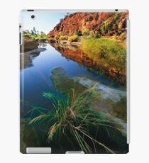 Palm Valley, Central Australia iPad Case/Skin