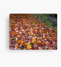 One leaf or two Canvas Print