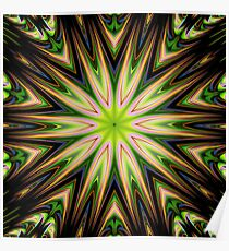 Color 11 Kaleidoscope Poster