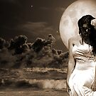 Fantasy Moonlight Beach Bride by Paul  Donaldson