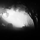 Out of the darkness....into the fog. by Enivea