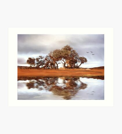 Country Reflections Art Print