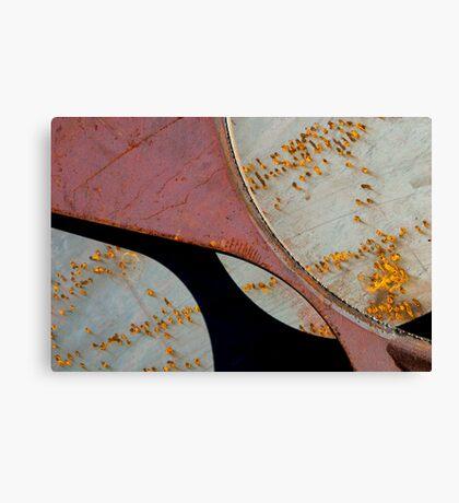 Dance of the Goldfish Canvas Print