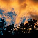 Golden Sunset Fingers by Gregory J Summers