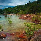 Koh Jum Rocks by Thomas Dawson