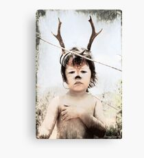 Forrest the fawn Canvas Print