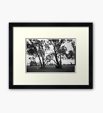 Dog in the park Framed Print