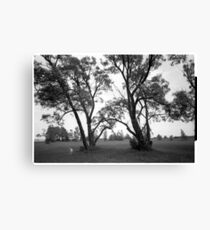 Dog in the park Canvas Print
