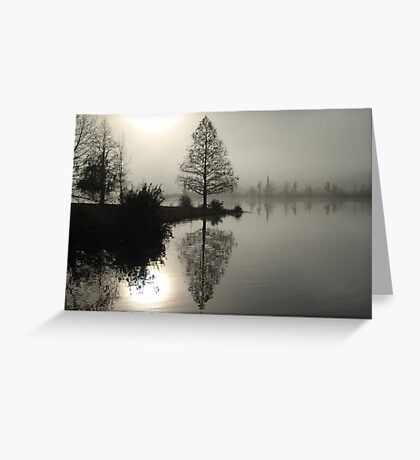 Cypress in the Fog  Greeting Card