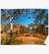 Roadside, Kimberley, Western Australia. Poster