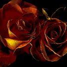 Daze of wine & roses by Alan Mattison