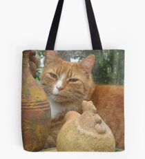 Spring Time Cat Tote Bag