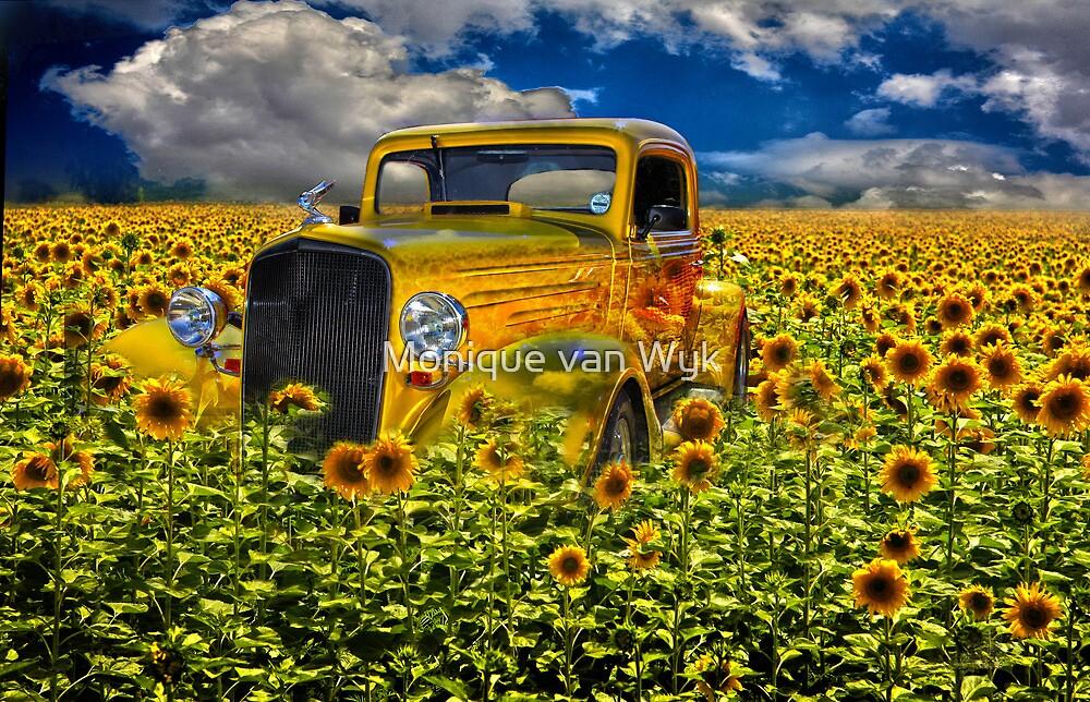 Yellow fields of happiness by Monique van Wyk