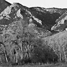 Boulder Colorado Front Range NCAR View by Bo Insogna