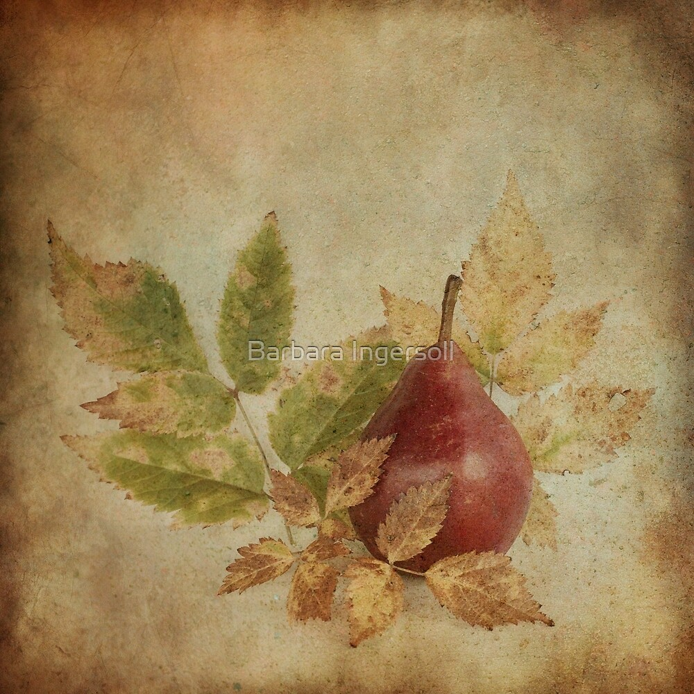 Red Pear by Barbara Ingersoll