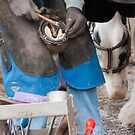 No foot no horse!!!!!!!  by LorrieBee