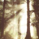 And the Sun Breaks Through by BobbiFox