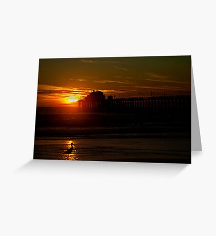 Bird at Sunset Greeting Card
