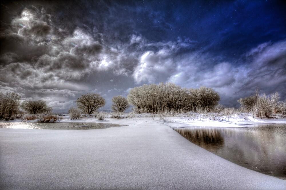 Snow Bridge by Bob Larson