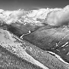 Cascade Mountains from Crystal Moutain by Barb White