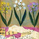 Scilla by Sorana Tarmu