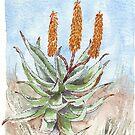 Aloe Ferox Gemälde 1 von Maree Clarkson