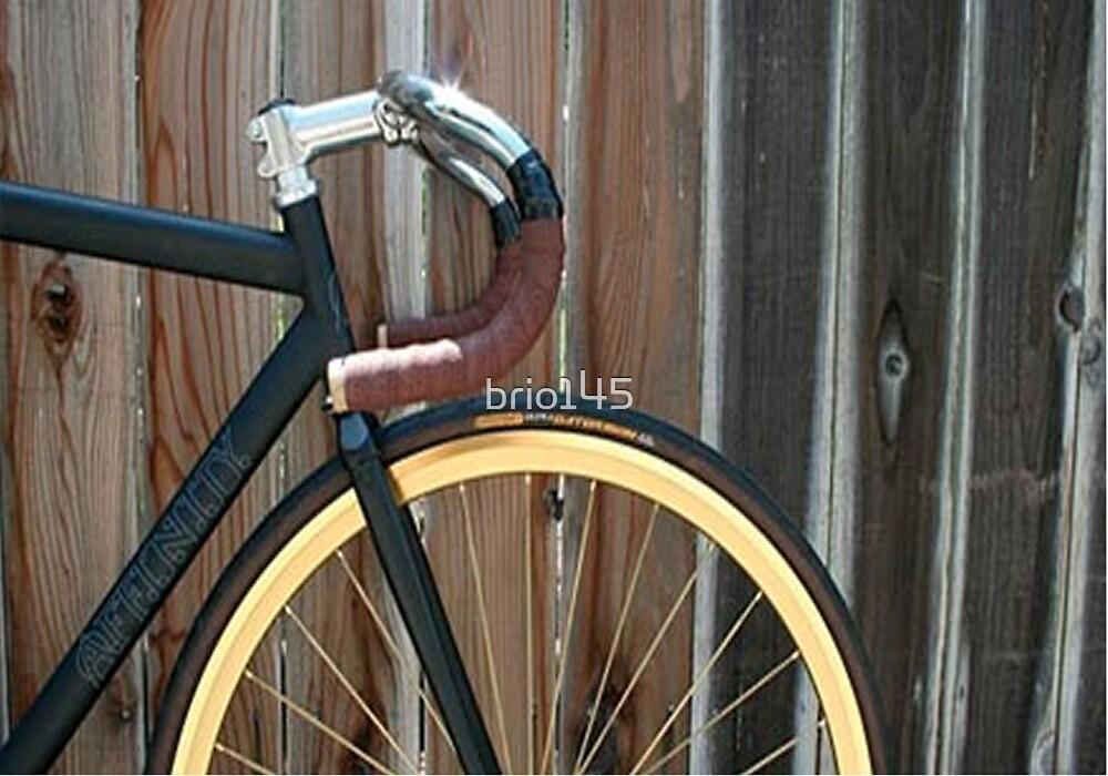 Fixed Gear by brio145