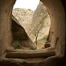 one tree - Capadocia - Turkey by Claire Haslope