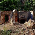 Nursery Ruins # 1 by Gavin Kerslake