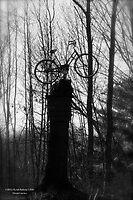Bike path by DreamCatcher/ Kyrah