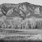 NCAR and Flatiron View Boulder CO BW by Bo Insogna