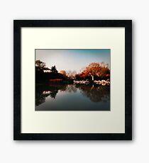 Shanghai Lake Colour Framed Print