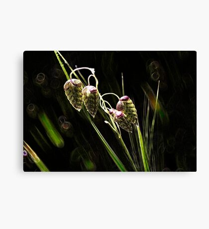Just Hanging Canvas Print